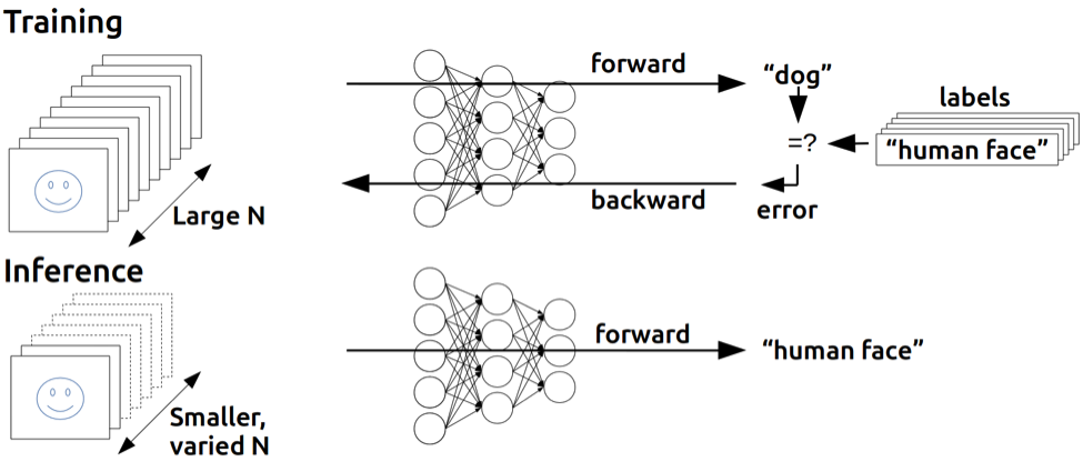 Deep Neural Network Training vs. Inference