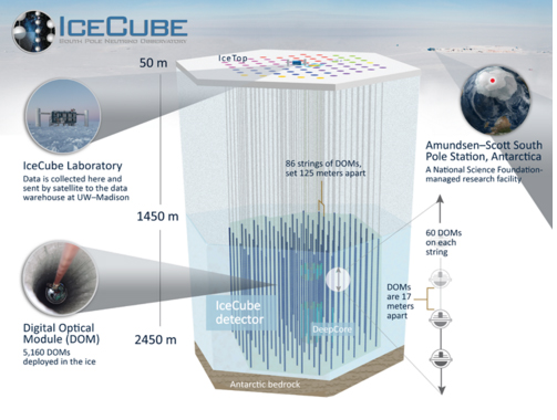 Figure 1: A cross section of the neutrino detectors, set up deep within the ice of Antarctica at IceCube Neutrino Laboratory.