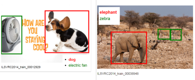 Figure 1. Examples of ImageNet images demonstrating classification with localization.