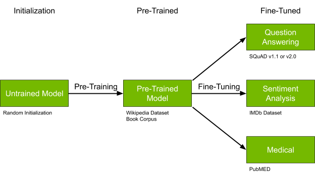 Diagram shows the initialization stage for an untrained model, a pretrained stage for a pretrained model, and a fine-tuned stage for question answering, sentiment analysis, and medical use cases.